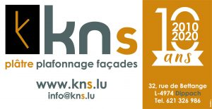 Logo KNS 2020
